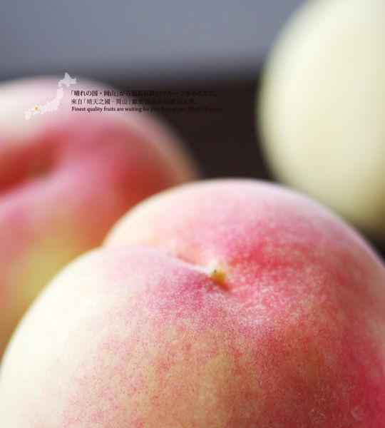 日本岡山水果 · 水果王國嚐水果