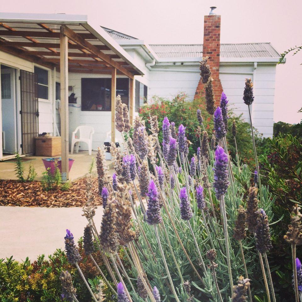 澳洲打工度假住宿 · 7種住宿選擇