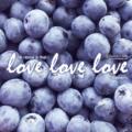 打工度假採藍莓