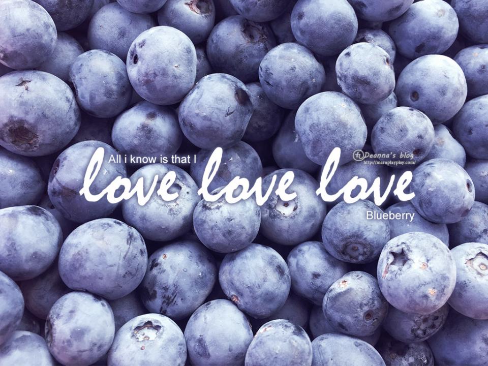 打工渡假 · Costa Berry Exchange 採藍莓