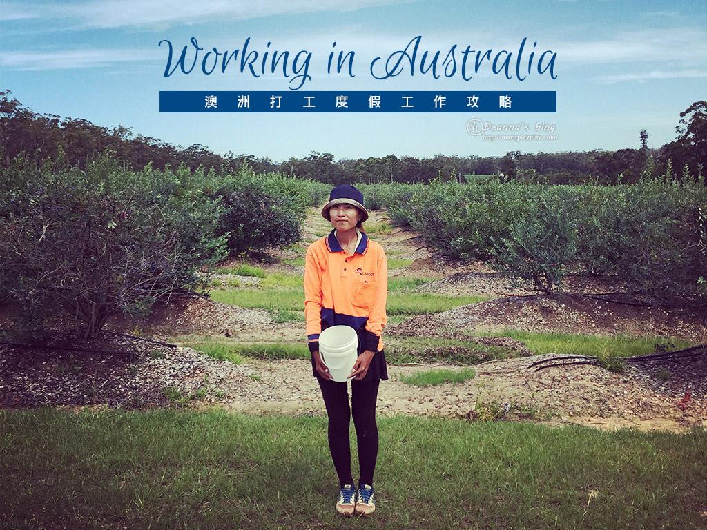 澳洲打工度假|工作攻略總整理
