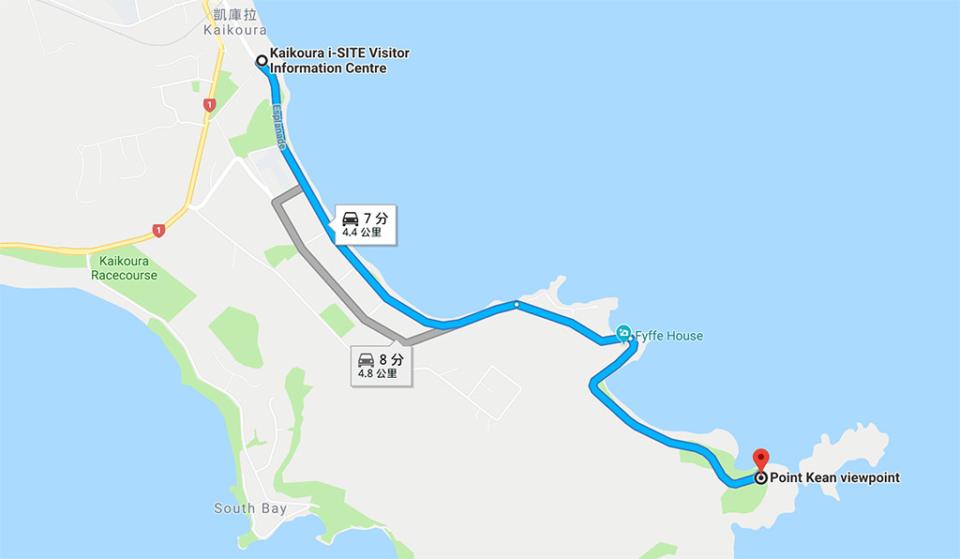 凱庫拉海豹位置