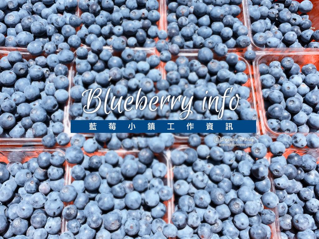 澳洲打工 · 採藍莓 除了costa的其他藍莓工作資訊