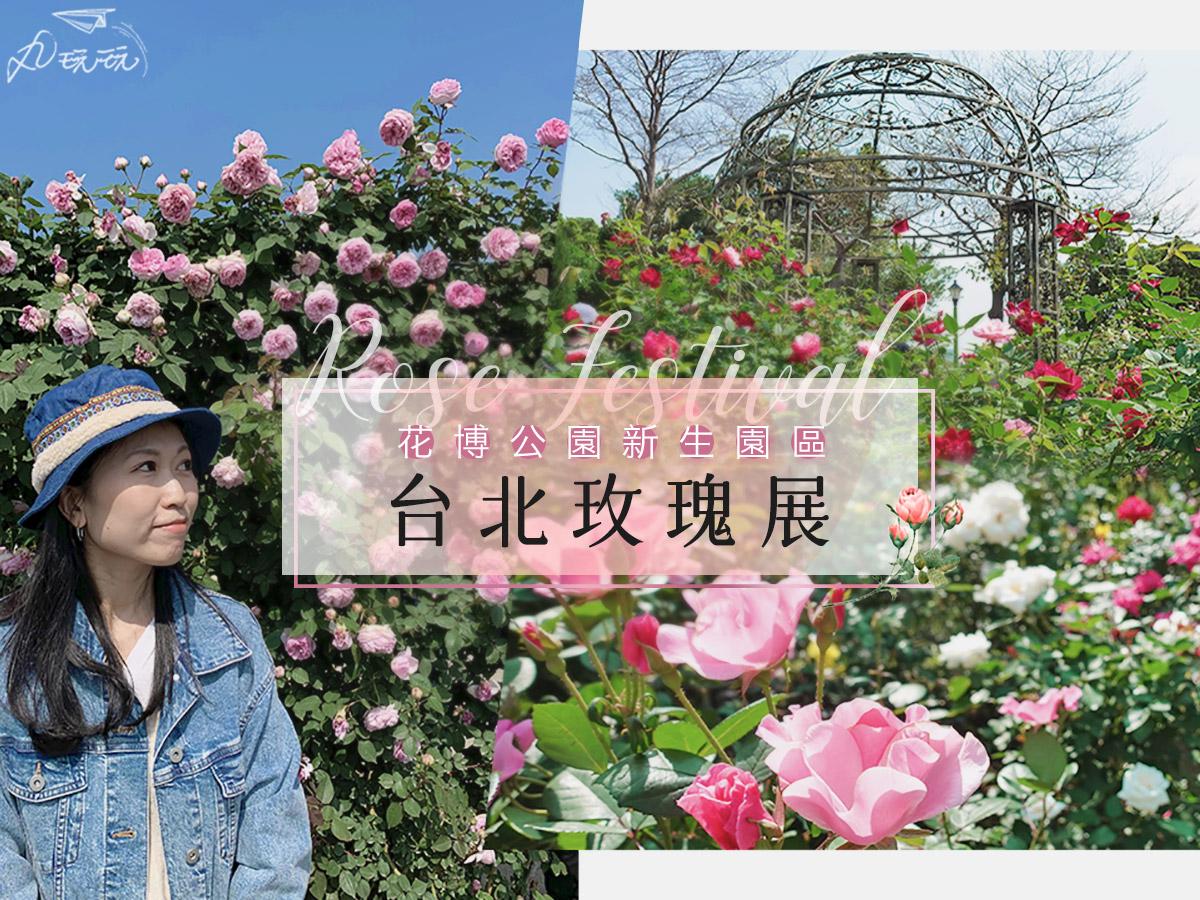 台北賞花|2021台北玫瑰展,唯美花海與你相約在新生公園