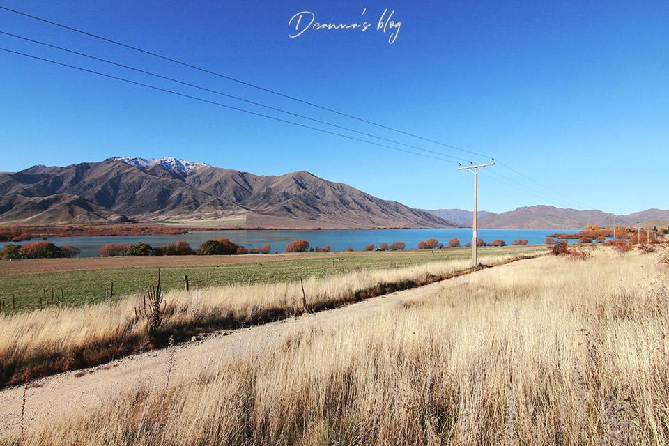 紐西蘭旅遊
