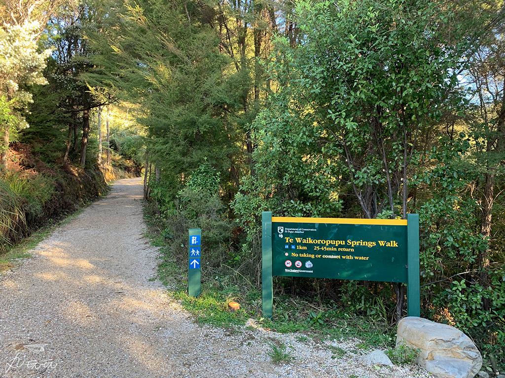 紐西蘭Te Waikoropupu Springs