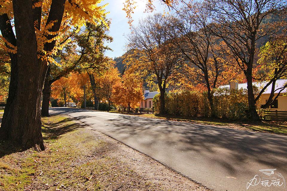 紐西蘭箭鎮秋天