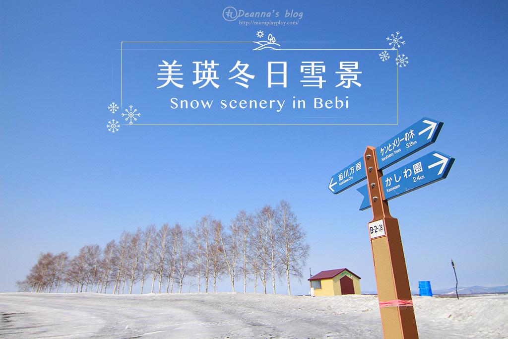 北海道美瑛|冬天裡樹木與雪地的無限寂靜