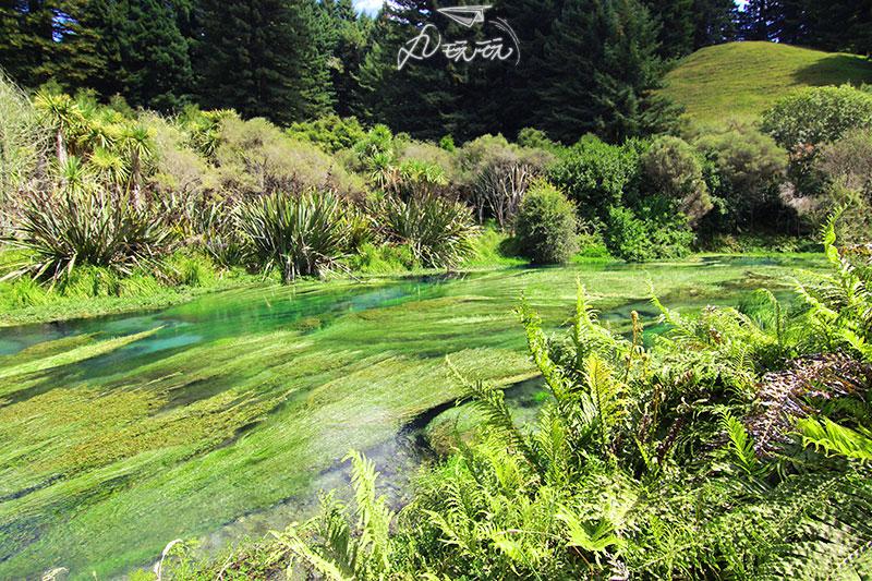 紐西蘭秘境