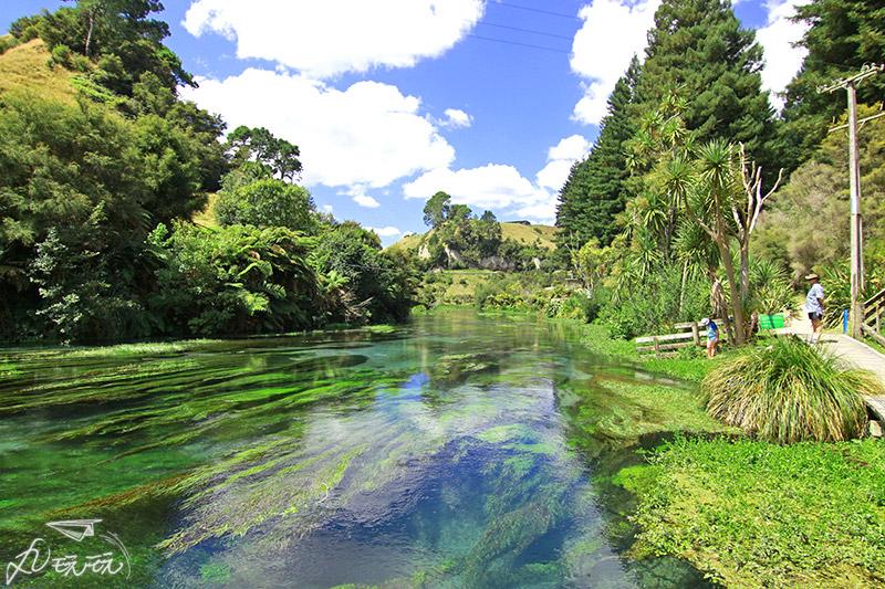 紐西蘭藍泉