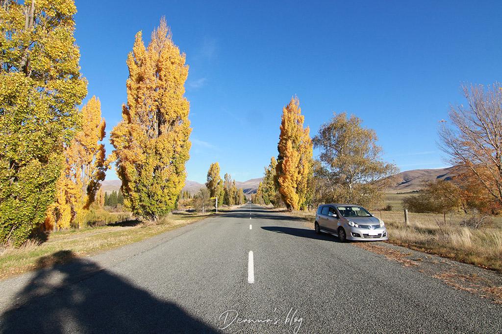 紐西蘭租車