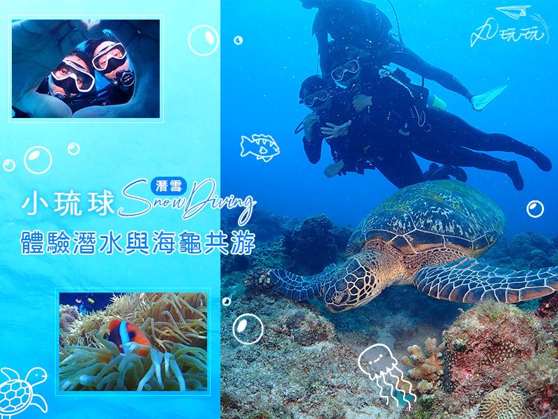小琉球潛水|潛雪專業教練帶你體驗潛水拍攝紀錄,深入海龜天堂