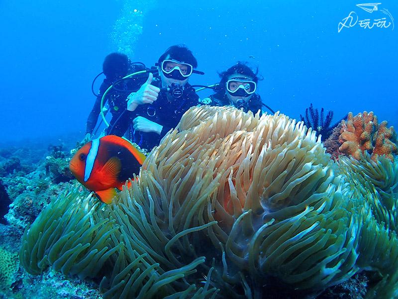 小琉球潛水行程