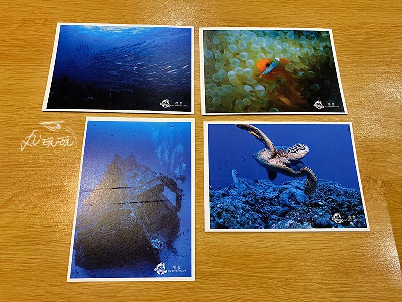 小琉球專業水下攝影
