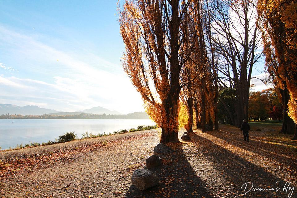 紐西蘭秋天瓦納卡